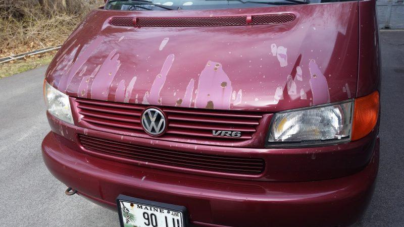 Front hood of a burgundy Volkswagen Eurovan.