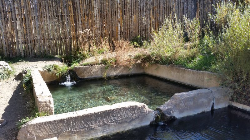 A concrete pool filled with hot spring water with a wood fence in the background.