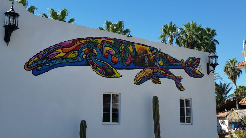 A multi-coloured whale painted on a white building in Loreto, Baja California Sur, Mexico.