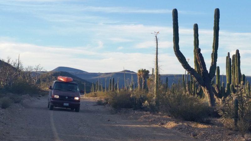 volkswagen van driving in the desert