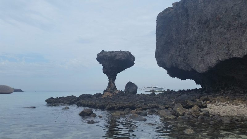 A mushroom-shaped rock formation.