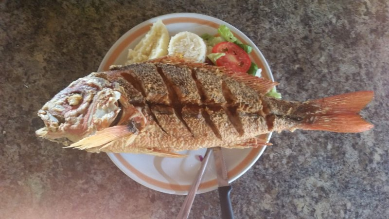 Whole fried fish grilled and served on a plate with rice and salad in Mexico