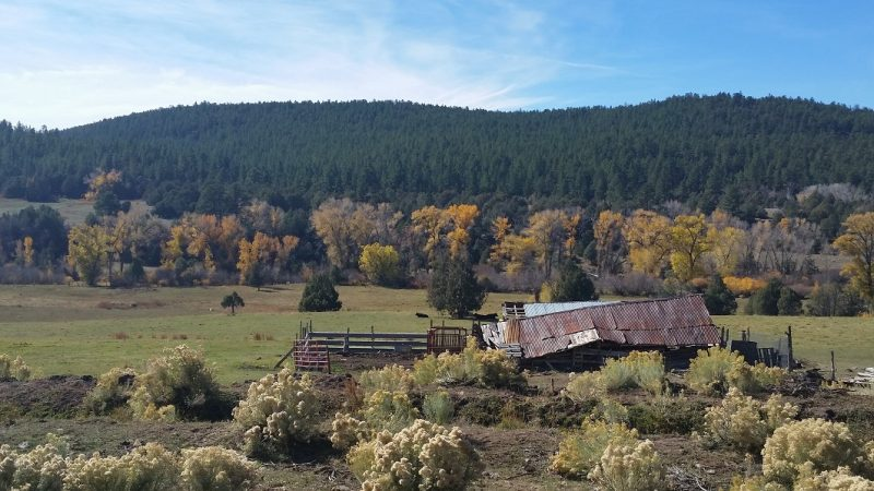 Old barn in ruin in autumn, Highway 76 in New Mexico along the high road to Taos from Santa Fe.