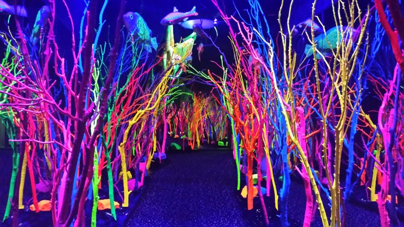Brightly colored trees at Meow Wolf in Santa Fe; this is one of the most unique and colorful day trips from Albuquerque.