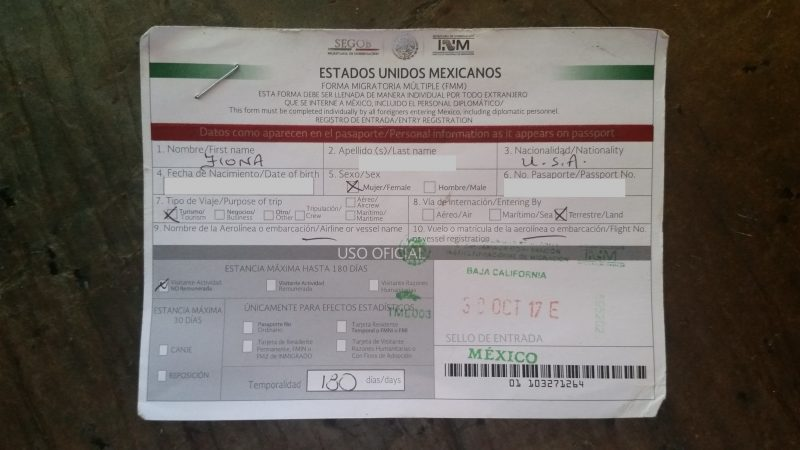 An official green, red and white Mexican tourist permit.