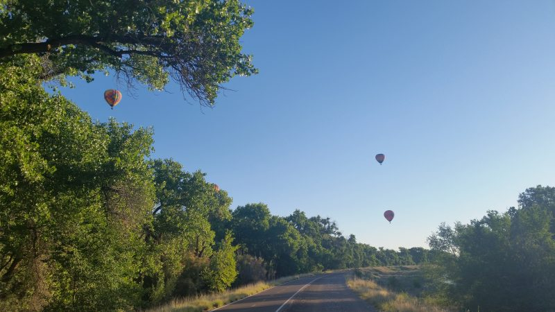 Hot air balloons in the sky over a paved trail lined with trees
