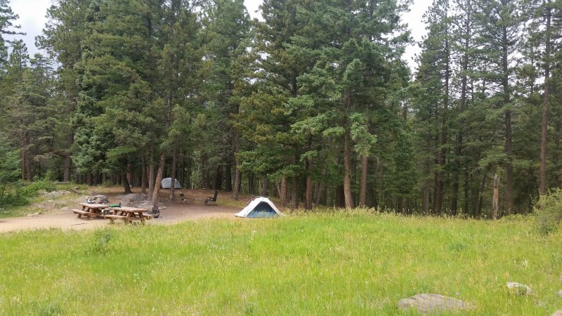 A tent in a clearing with pine trees in the background at Jack's Creek Campground near Pecos, New Mexico.
