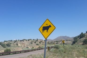 A yellow New Mexico road sign showing a cow and a UFO.