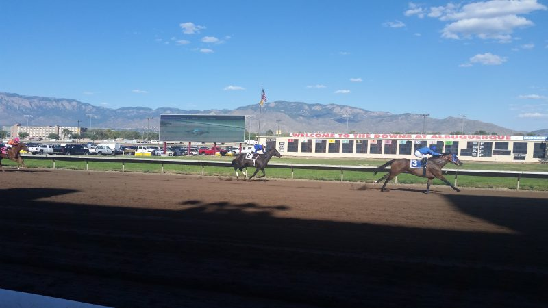 Horses racing on a flat dirt track at Albuquerque Downs with mountains in the background.