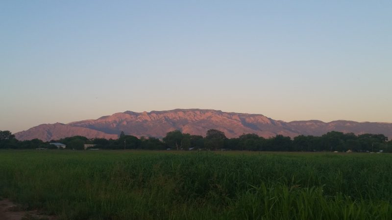 The Sandia Mountains in Albuquerque illuminated by setting sun with green fields in the foreground.