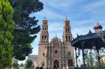 Chihuahua Cathedral with the roof of the wrought iron band stand and a pine tree in the foreground.