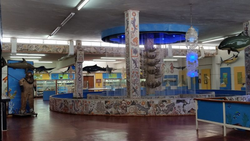 A large room in a museum in Mazatlan covered in sea shells and featuring an antique divers bell helmet and suit.