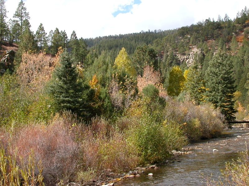 Pecos River, New Mexico in Autumn.