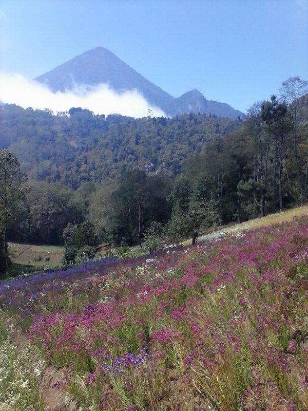 A view of Volcan Santa Maria near Quetzaltenango, Guatemala.