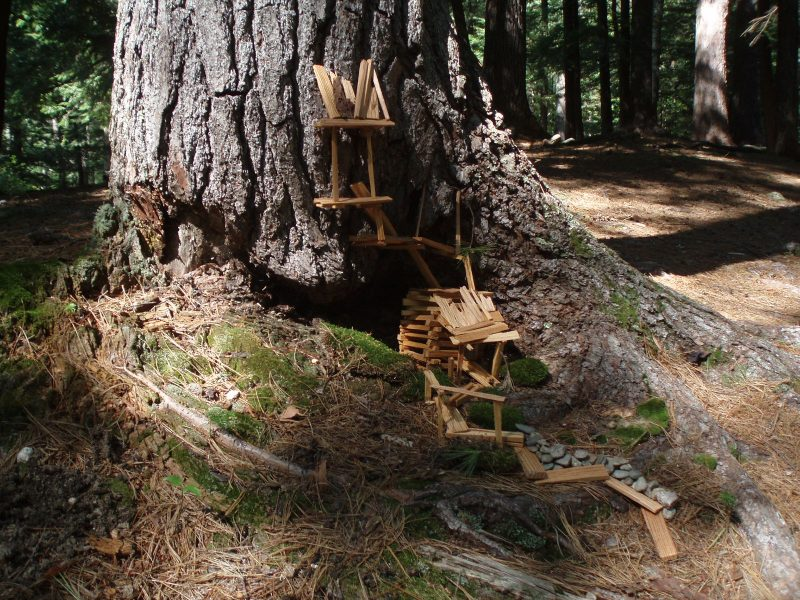 A fairy house against a tree, built from tiny wood planks and stones on Mackworth Island.