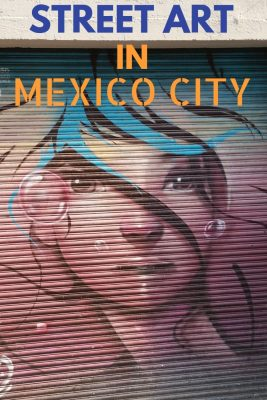 An example of colorful urban artwork of a lady on the streets of Mexico City.